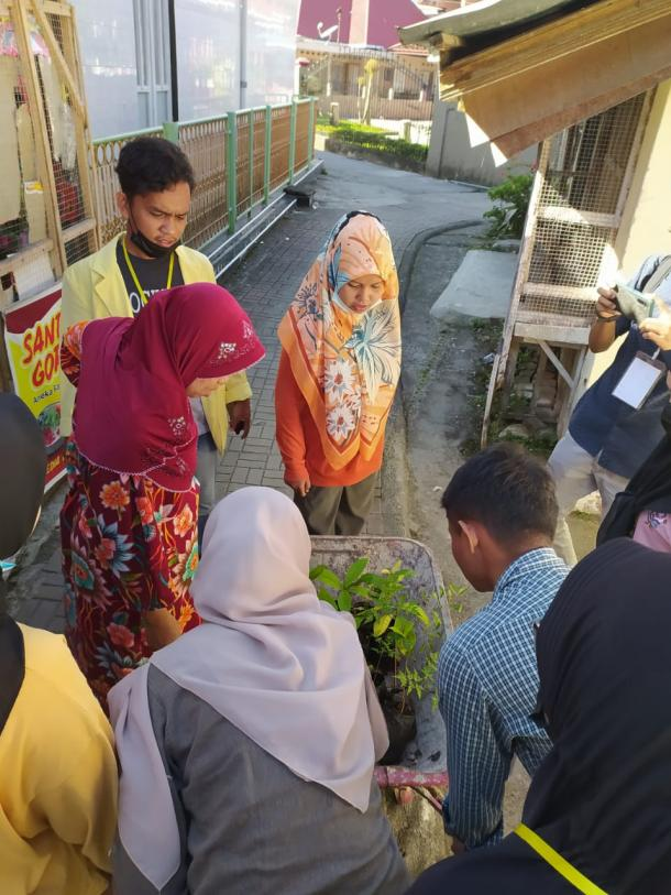 Mahasiswa KKN Kayu Kubu Bukittinggi Bagikan 800 Bibit Pohon Gratis
