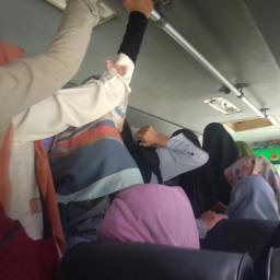 Bus Antar Jemput Kampus Limau Manis Penuh, Mahasiswa PLB Terpaksa Pesan Go-Car