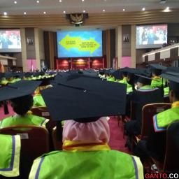 Wisuda ke-113: UNP Lepas 1211 Wisudawan dan Wisudawati